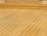 tallow-wood-020