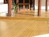 tallow-wood-020.jpg